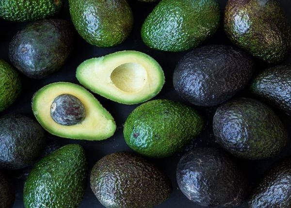 How To Grow Avocados in WA