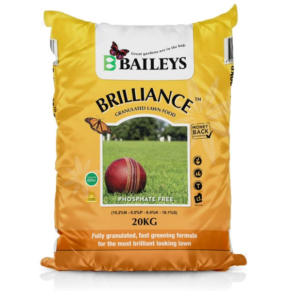BRILLIANCE  GRANULATED image