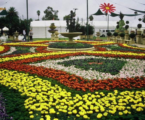 Expert Gardening Tips & How-To | Blog | Baileys Fertilisers