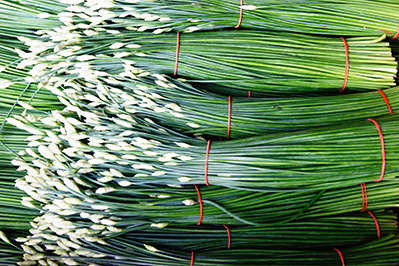 Piles Of Spring Onion Bunches