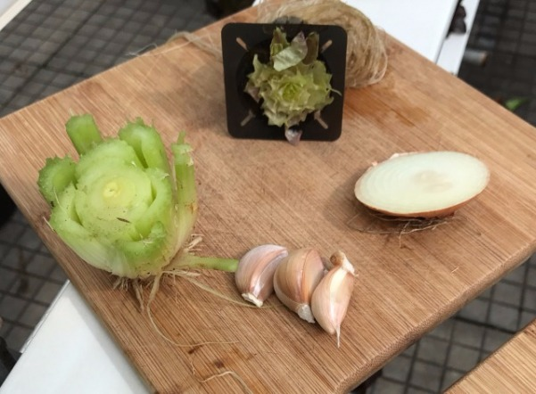 Celery, Onion, Garlic And Lettuce Scraps