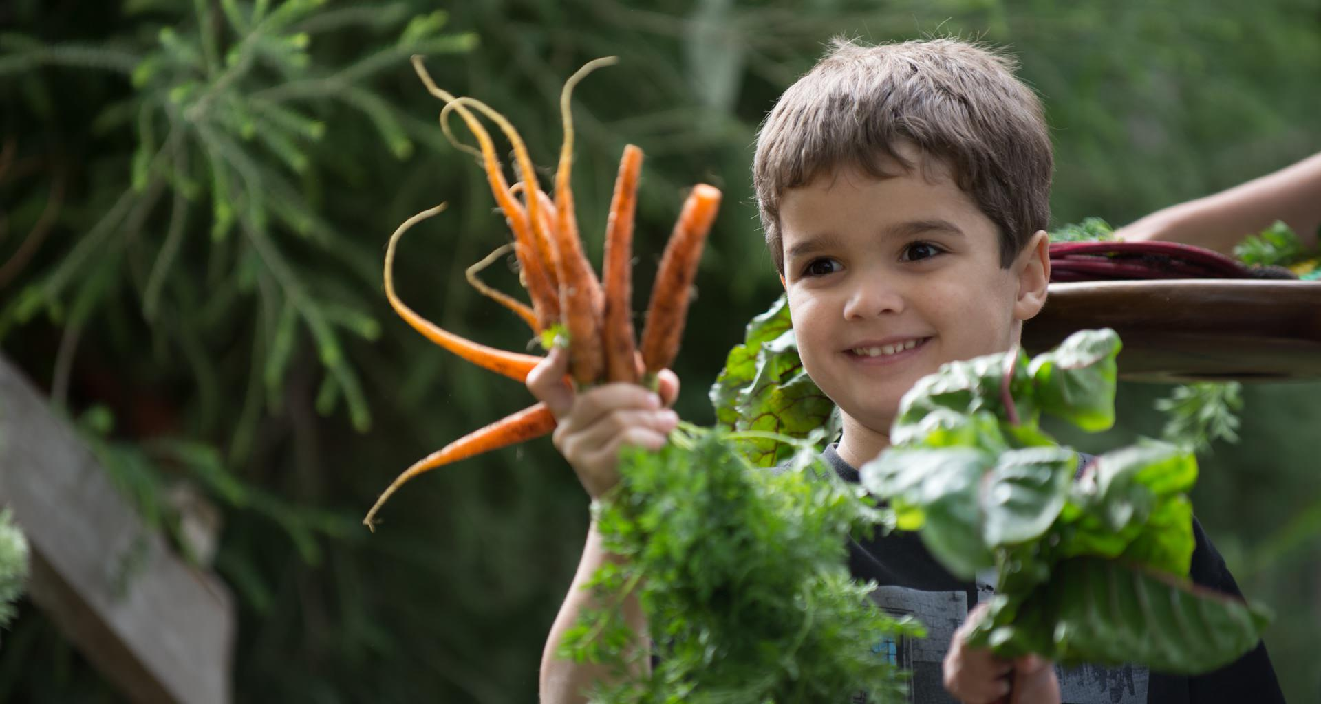 Young Boy Holding Homegrown Carrots