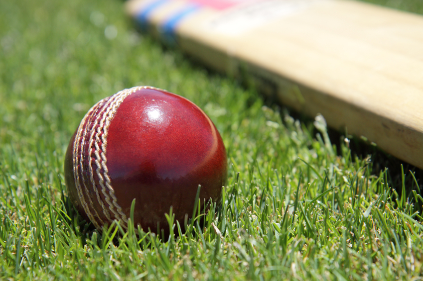 Cricket Bat And Ball On Grass Close Up